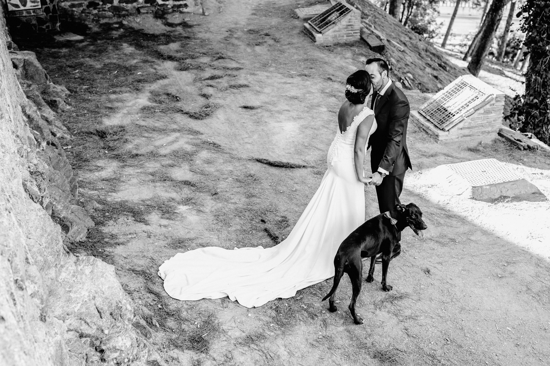 Postboda de Cecilia & Jorge. una postboda con su perrito Bruno